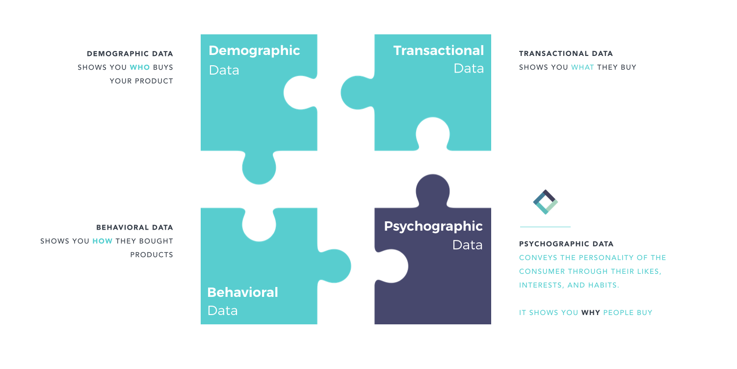 data puzzle psychographic data