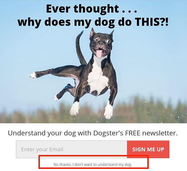 dark patterns confirmshaming dog
