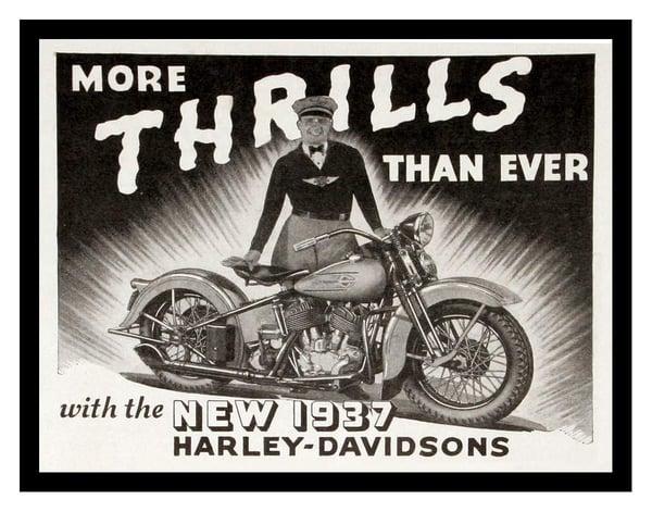 harley davidson 1930 psychographic segmentation lifestyle