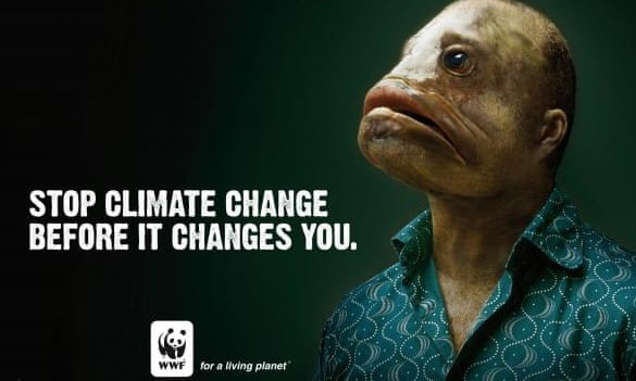 stop climate change before it changes you wwf